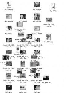 http://www.demitourdefrance.fr/files/gimgs/th-95_fichiers_zin.jpg
